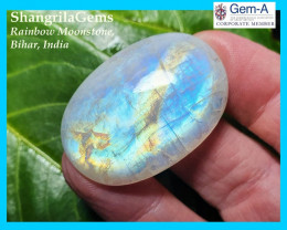 39mm 63ct rainbow moonstone oval cabochon 39 by 27 by 7mm