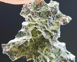 Moldavite from Besednice not from reseller quality A+