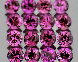 1.80 mm Round 30pcs Unheated Lavender Pink Sapphire [VVS]