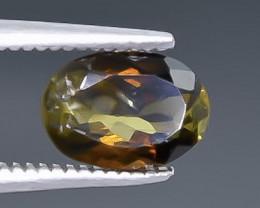 1.19 Crt Tourmaline  Faceted Gemstone (Rk-43)
