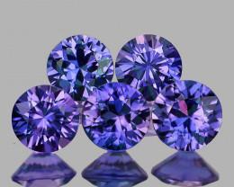 3.30 mm Round 5 pcs  Unheated Violet Blue Sapphire [VVS}