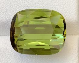 19.55 Carats Natural Color Tourmaline Gemstone