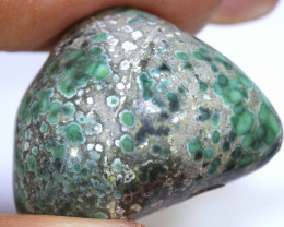 34.80CTS BLUEBOY VARISCITE CLAM PSEUDOMORPH DRILLED TBG-3520
