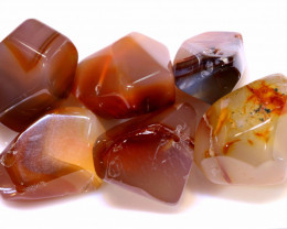 140 CTS  CARNELIAN BEAD DRILLED (6PC)  NP-573