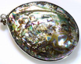 65.25 CTS  PAUA SHELL PENDANT NATURAL DOUBLE SIDED NP-586