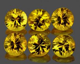3.00 mm Round 6 pcs 1.02cts Bright Yellow Sapphire [VVS]