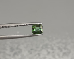 0.83Cts Natural Green Colour  Tourmaline Gems