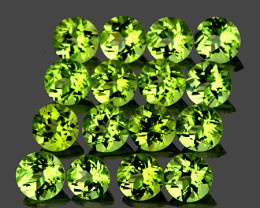 3.00 mm Round 25 pcs 3.17cts Green Peridot [VVS]