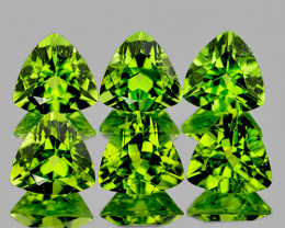 5.00 mm Trillion 6 pcs 2.91cts Green Peridot [VVS]