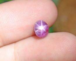 Natural Untreated Star Ruby , Sri Lanka 1.78 Ct. (01415)