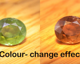 Rare Natural Green to Red  Colour Change Garnet 2.81 Ct. (01712)