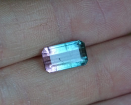 3.25ct Bi-color Tourmaline - SI -
