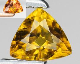 0.49 Ct Rare Bastnasite Fine Quality Gemstone BS22