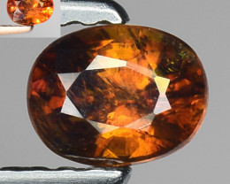 0.44 Ct Natural Sphene Color Change Sparkiling Luster Gemstone SF14