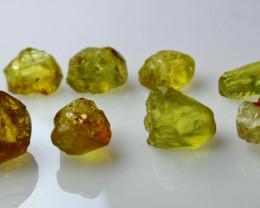 30.50 CT Natural Demontoid Green Garnet Rough Lot