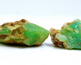 230.75 Cts Natural & Unheated Green Chrysoprase Rough lot