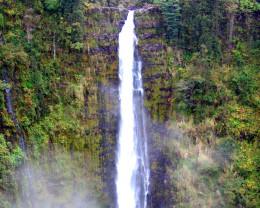 700 foot tall Akaka Falls, Big Island, Hawaii.