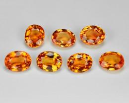 2.12 Carat 7pcs Oval 4.47 x3 .62 Fancy Orange Color Sapphire Loose Gemstone