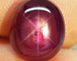 13.66 Carat Fiery Red Ruby Star - Gorgeous