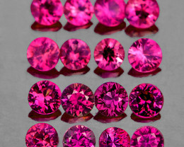 2.20 mm Round Machine Cut 16 pcs Purplish Red Sapphire [VVS]