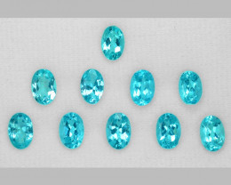 5.54 Cts Un Heated 10 PCS Natural Neon Blue Apatite Loose Gemstone