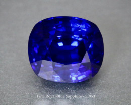 Vivid Royal Blue Sapphire - 5.30ct Cushion - Eye Clean Gem