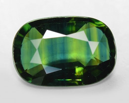 1.85 Cts Amazing Rare Natural Fancy Green Party Sapphire Loose Gemstone