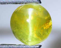 0.95 Cts Cats Eye Chrysoberl Rare Quality Gemstone Ct6