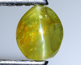 0.75 Cts Cats Eye Chrysoberl Rare Quality Gemstone Ct9