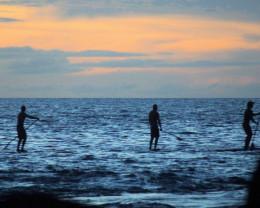 Long Board paddling, sunset, Big Island, Hawaii.