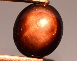 0.86 Carat Very Rare Black Star Cats Eye Gemstone