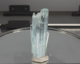 76.70Cts  Multi Terminated Aquamarine Specimens  From Pak