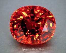 Glittering Flame Orange Spessartite Garnet 22.45ct Oval - Near Loupe Clean