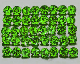 1.00 mm Round 100 pieces Chrome Green Diopside [VVS]