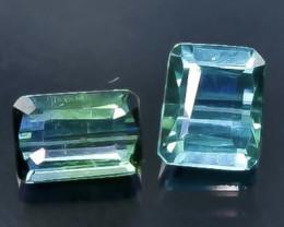 0.96 Crt  Tourmaline Faceted Gemstone (Rk-56)