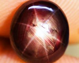 4.40 Carat Fiery, Fancy Star Ruby - Gorgeous