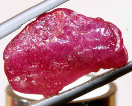 16.80 CTS   MOZAMBIQUE  RUBY ROUGH   RG-5303