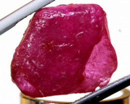 18.55 CTS   MOZAMBIQUE  RUBY ROUGH   RG-5308