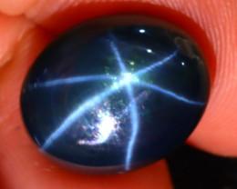 Star Sapphire 12.42Ct Natural 6 Rays Blue Star Sapphire D0713/A52