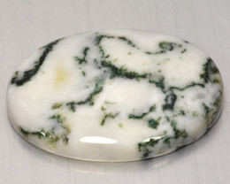 27.59  Cts Untreated Fancy Tree Agate Natural Loose Gemstone