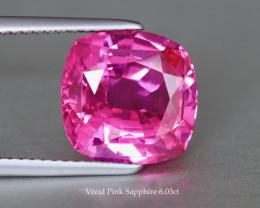 Seductive Vivid Pink Sapphire - Cushion 6.03ct -10.5mm - Heated