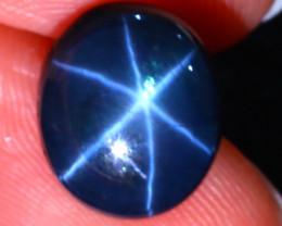 Star Sapphire 8.77Ct Natural 6 Rays Blue Star Sapphire D1314/A52