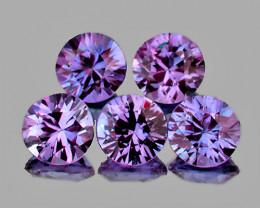 3.00 mm Round 5 pcs Violet Sapphire [VVS}