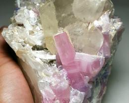 Amazing Natural Bicolor Hot Pink Tourmaline with beautiful Quartz specimen