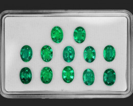 9.40 Cts 12 pcs Natural Vivid Green Zambia Emerald Loose Gemstone