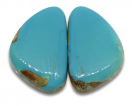 16.75 ct Triangle Turquoise Pair
