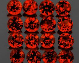 3.50 mm Round 16 pcs 3.82cts Orange Red Garnet [VVS]