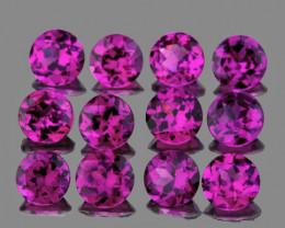 3.00 mm Round 12 pcs 1.67cts Magenta Purple Rhodolite [VVS]