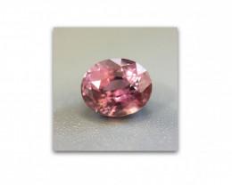 1.59 CTS Natural Pink sapphire |Loose Gemstone|New Certified| Sri Lanka