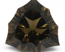15.13ct Trillion Smoky Quartz Fantasy/Fancy Cut-$1 NR Auction, Free Ship